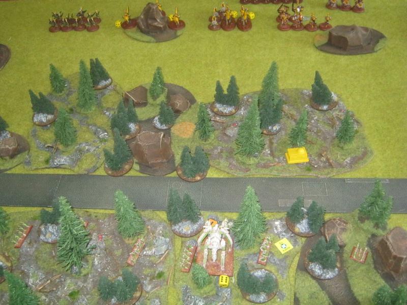 Assaut sur Zebra (campagne narrative) - Page 2 823435IMG0395