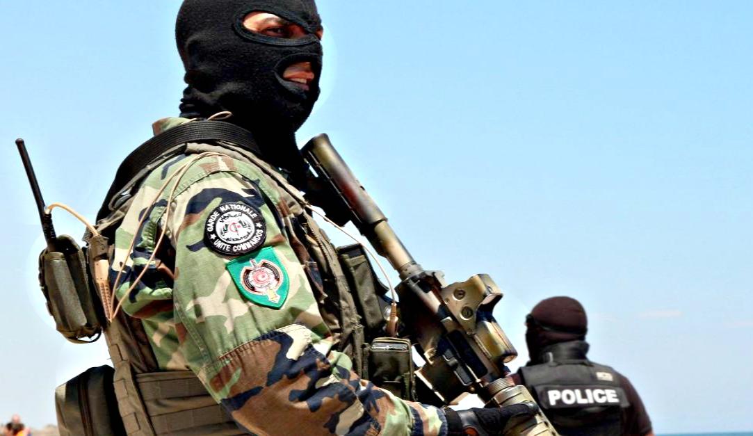 Armée Tunisienne / Tunisian Armed Forces / القوات المسلحة التونسية - Page 6 835758649743028B975987683Z120150705085630000GV04PA1HK20
