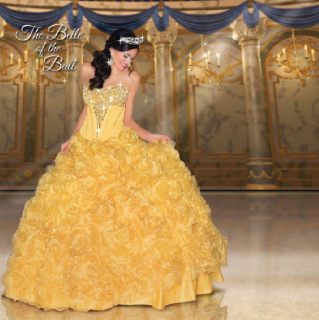 (Fashion) The Disney Forever Enchanted Collection & The Disney Royal Ball Collection 83837294p2