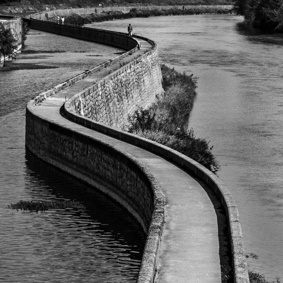 Serpent de Loire ... le retour 839966P132063412