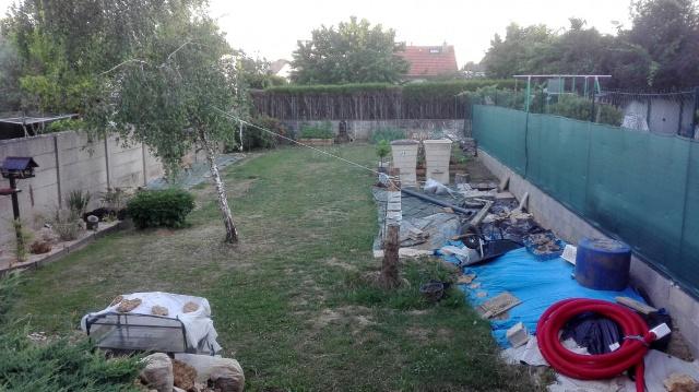 Recherche arbre pour mon jardin - Page 3 843443IMG20170623212657