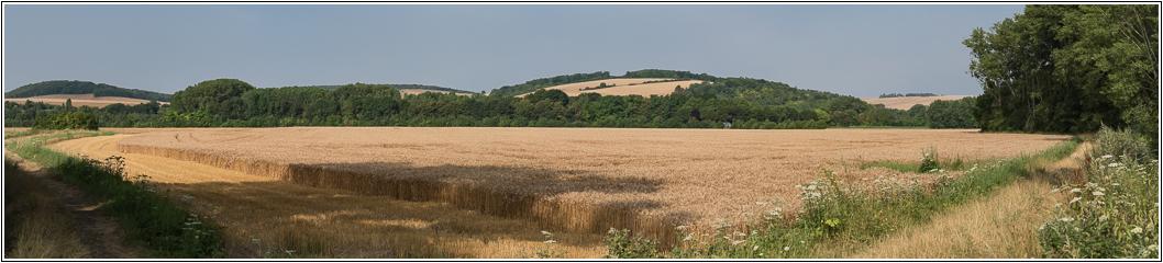 Promenade à Evry (Yonne) 846949LR6P7240047Panorama