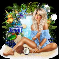 Aperçu des tutos de l'admin Jewel 853577tuto884lounging