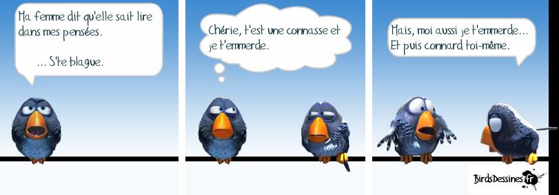 Les Birds Dessinés - Page 2 8550901376335968