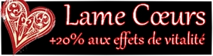 """Rencontre"" [PW Axe] 859282LamesCoeurs"