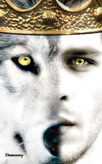 Joseph Morgan - 200*320 861514bigbadwolf