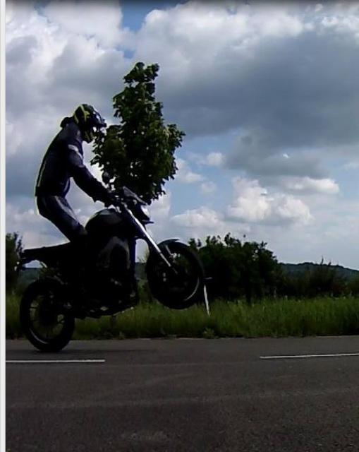 Le Wheeling et la MT09  - Page 3 8748441317908211860649847385231867403475184523847n