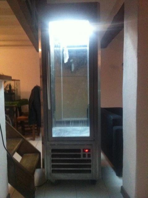 aquaterra dans frigo vitrine  877680IMG2925