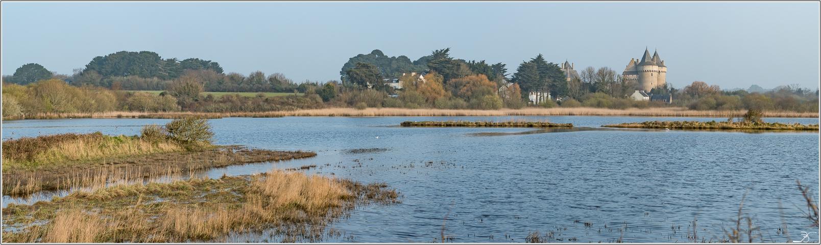 Morbihan: Suscinio, la plage 878298LR6P3130091Panorama