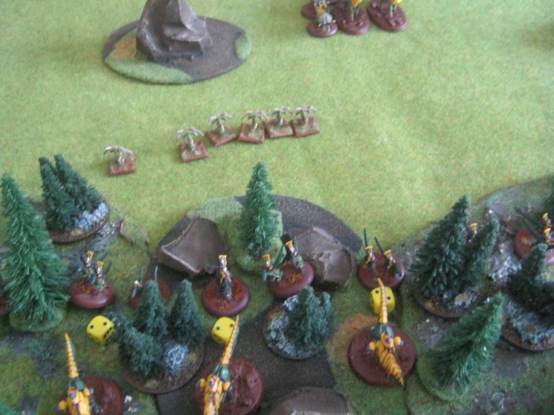 Assaut sur Zebra (campagne narrative) - Page 2 882660IMG0403