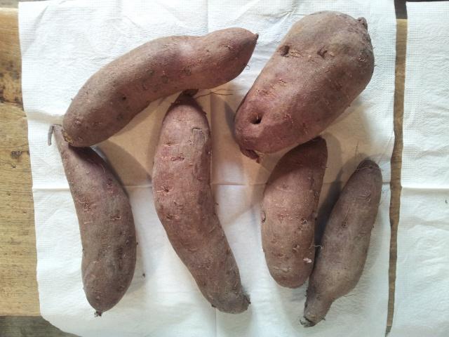 patates douces 88316720160130092716