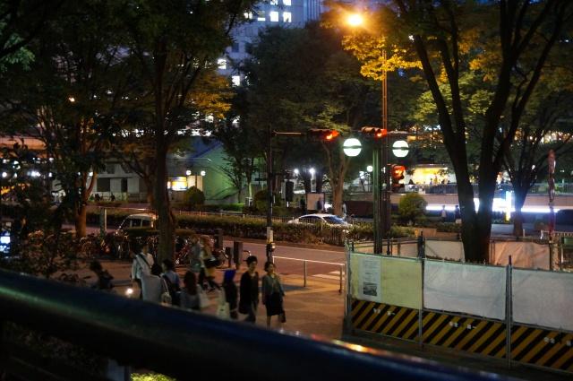 gaijin - Gaijin in Japan: Tokyo - Kyoto - Osaka [Terminé] 883177DSC01286