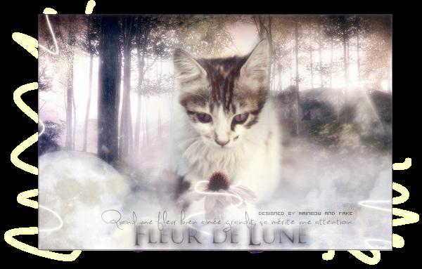 • Article Cat's News : Au niveau des clans et du RPG, il se passe quoi ? 895304flower