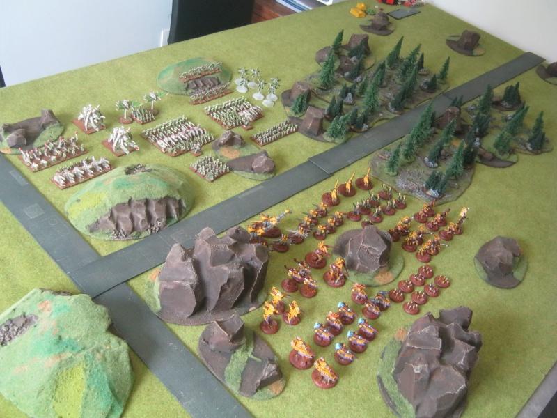 Assaut sur Zebra (campagne narrative) - Page 2 896091IMG0384