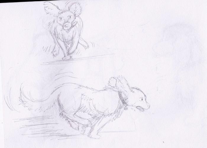 Dragons, chimères et créatures arc-en-ciel - Page 3 899530sketchchiencourse