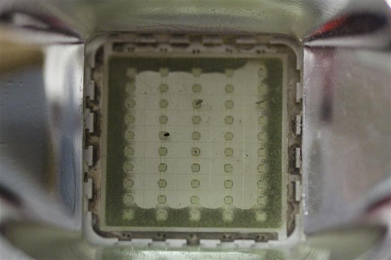 Quelle rampe LED pour le bac d'Hervé ? - Page 2 900309sIMG5439mylittlereefathome