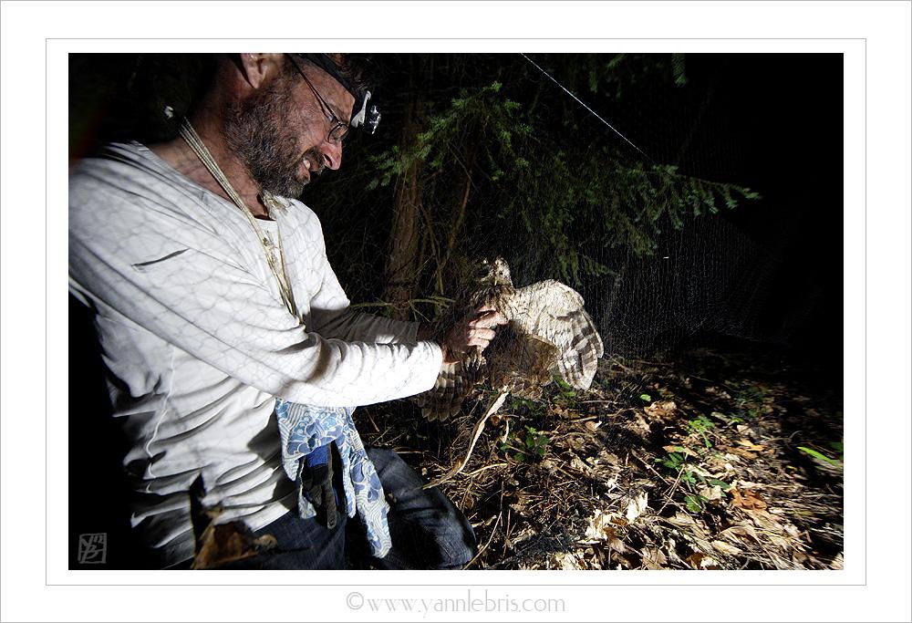 Soirées de capture chauves-souris 2012 - Page 4 900845filet2
