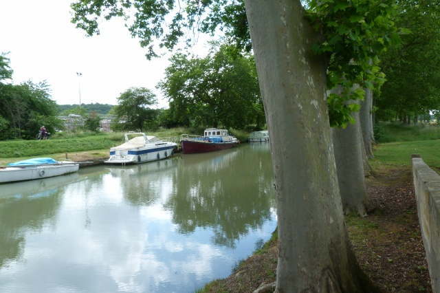 CR (Photos) - Petite sortie au Lac de la Ganguise 14/06/2015 904761Canal1