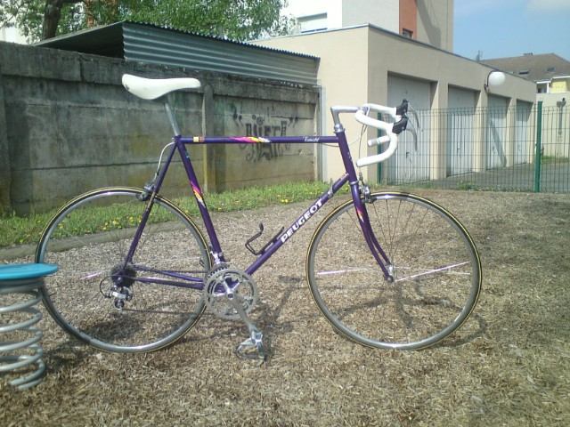 pinarello - LA GALERIE  906770DSC025101