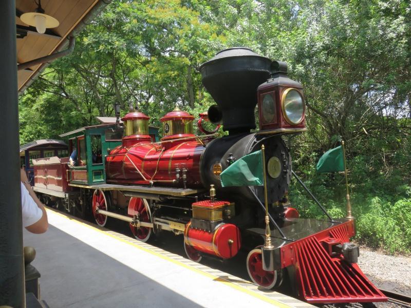 Walt Disney World + Universal Studios + Sea World + Busch Gardens Summer 2014 - Page 4 912551IMG0931