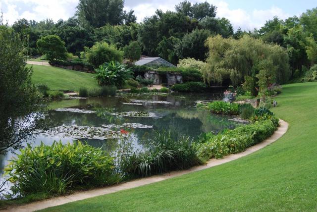 (47) Latour-Marliac, jardin de nénuphars - Le Temple-sur-Lot 915027DSC4955