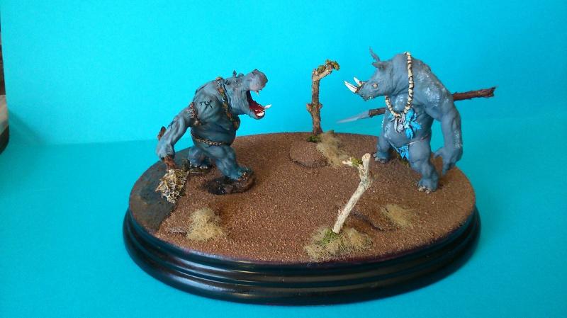 Rhinotor contre hippoguerrier. (Figone 70 mm environs) 917244DSC00011