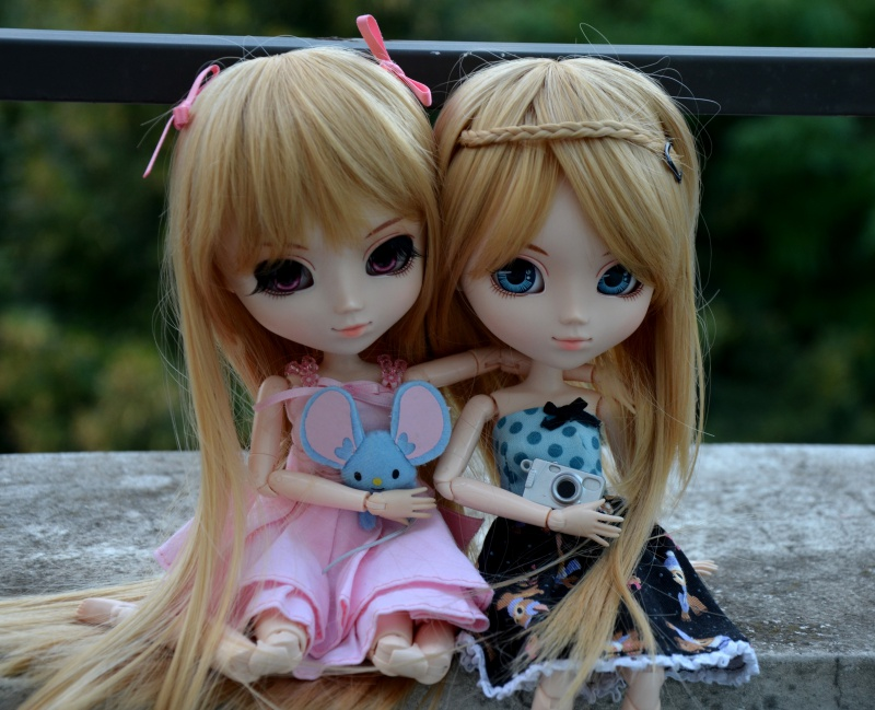 [24 dolls] Présentation de ma famille pullipienne  917301shinku003