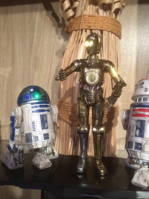 R2-D2 et C3-PO (et R5-D4) 918699IMG0250