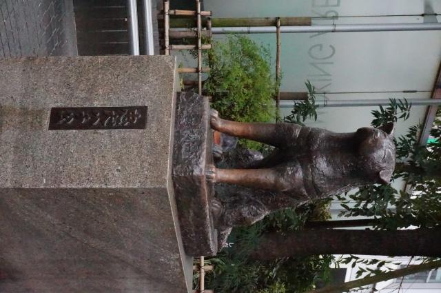 gaijin - Gaijin in Japan: Tokyo - Kyoto - Osaka [Terminé] 919067DSC01187