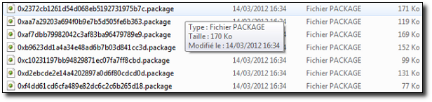 [Fiche] Nettoyer un Sims3pack persistant  926266packages