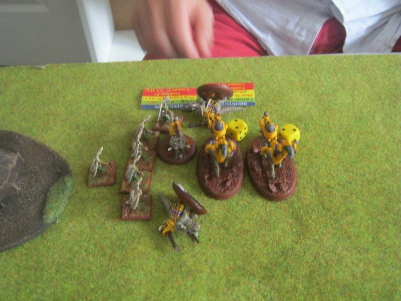 Assaut sur Zebra (campagne narrative) - Page 2 933634IMG0392