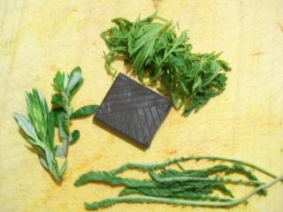 Consommez les plantes sauvages comestible 9342401000928