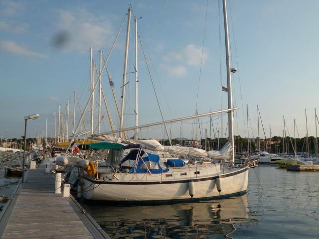 voiles - Un catboat de croisière... kesaco ? 935214P1020465
