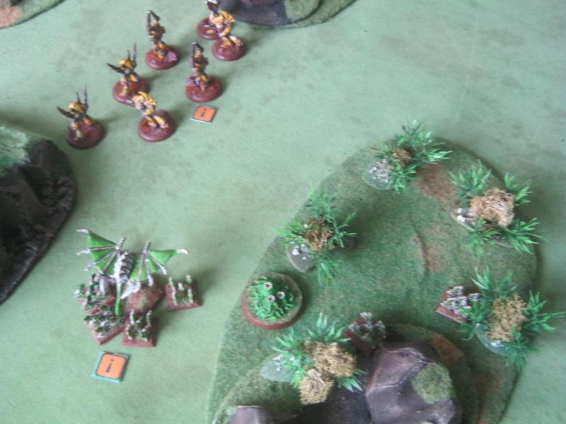 Assaut sur Zebra (campagne narrative) - Page 2 936521IMG0219