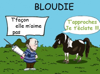 BLOUDIE, ponette ONC, réservée par Chouff !!! partie rejoindre les étoiles ** - Page 4 942312bloudie