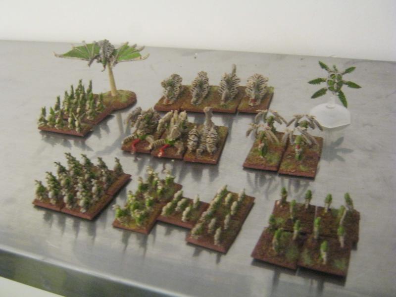 Assaut sur Zebra (campagne narrative) - Page 2 946506IMG0226