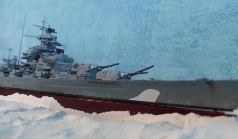 Bismarck 1/700 [Trumpeter] - Page 4 950000HPIM2174