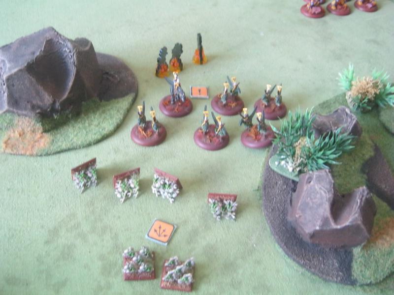 Assaut sur Zebra (campagne narrative) - Page 2 951515IMG0202