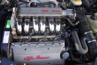 """Alfa Romeo Gtv 916 """"VENDUE"""" 951692DSCF3302"""