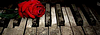 Entre vie et mort RPG 952791logopourtopsite3