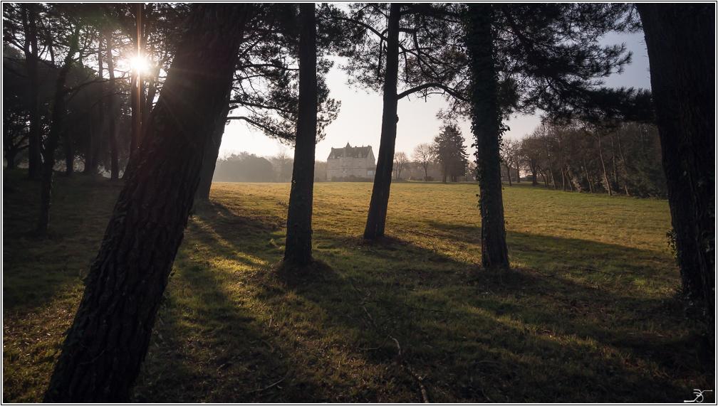 Morbihan, Le Duer, sentier cotier 961004LR6P3180019