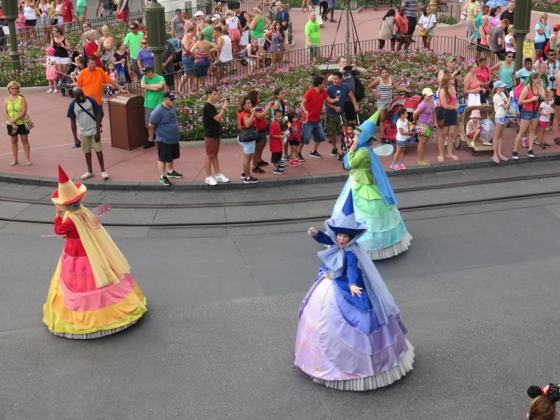 Walt Disney World + Universal Studios + Sea World + Busch Gardens Summer 2014 - Page 4 971261IMG0971
