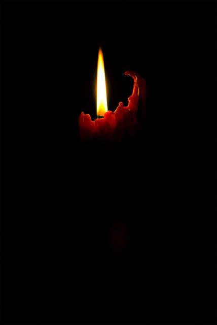 un KAWA en TERRASSE - Attentats Paris 973867tumblrnumqzxV1o71skr0b7o1500