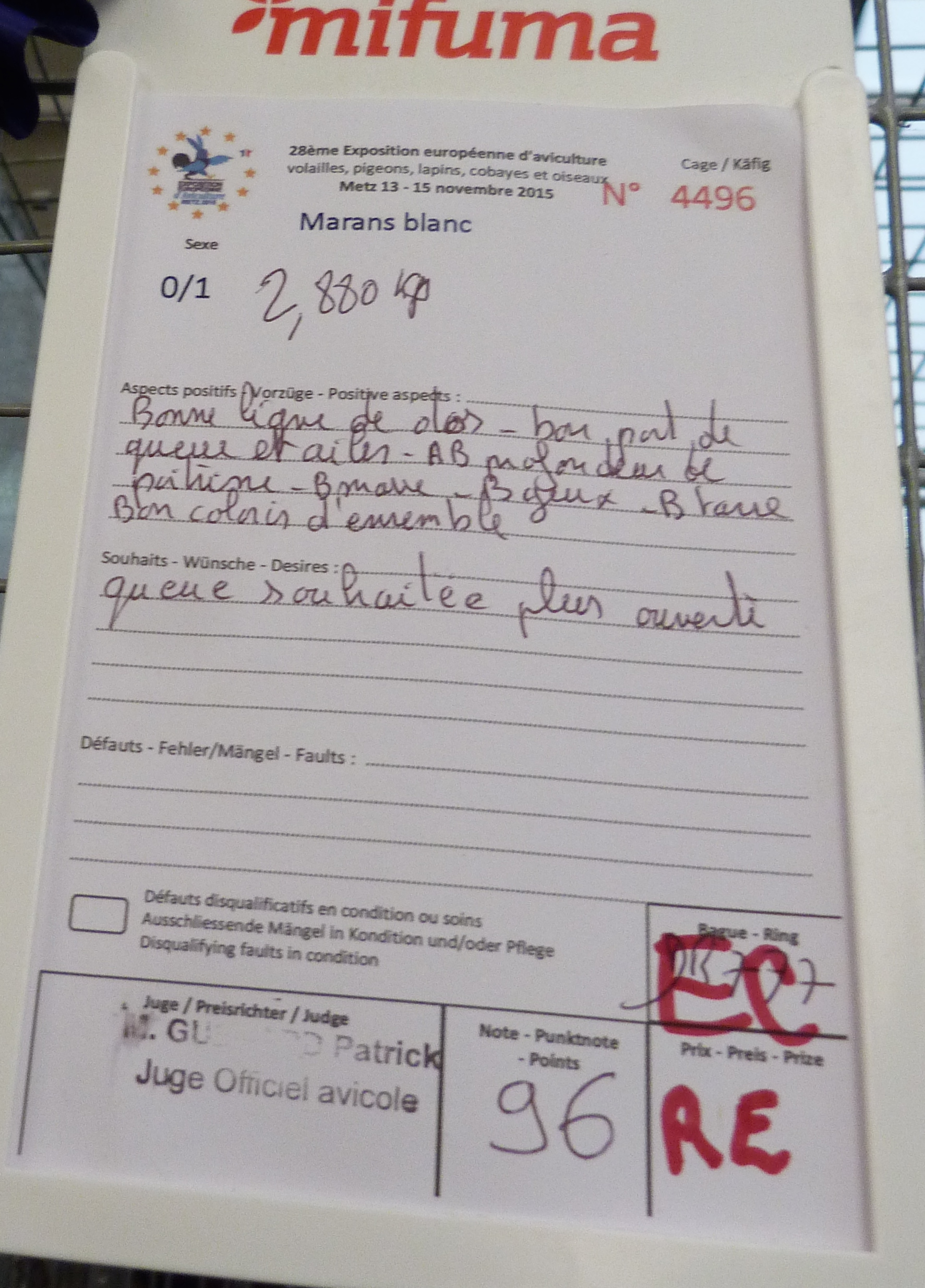 Expo de Metz, mes coups de cœur en GR 974151P1170276
