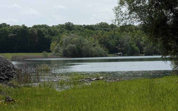 Balade au Lac du Der (51-52) - weekend du 23-24 mai 2015 - Page 3 975329DSC0005