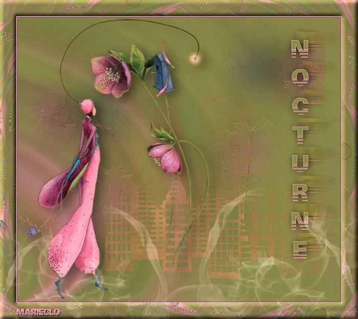 Nocturne (Psp) 975459coursint10redimensionne
