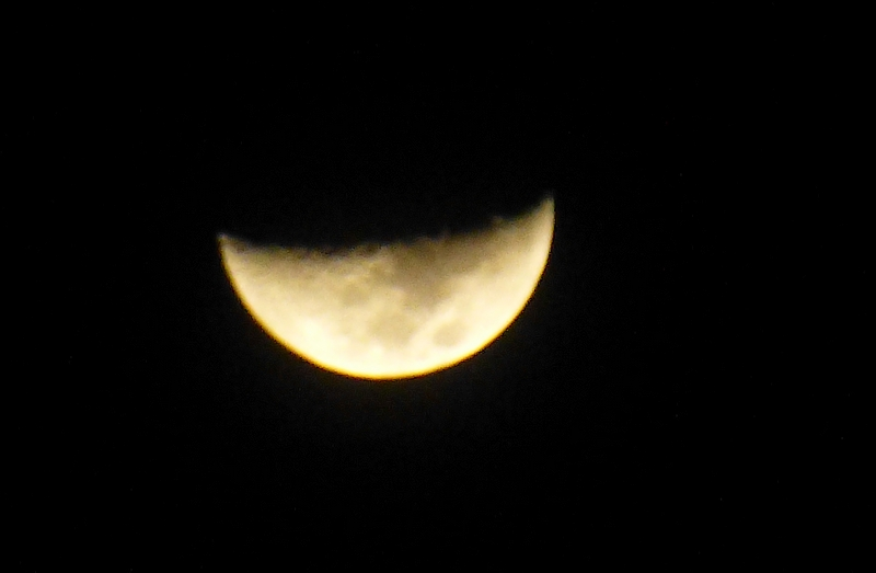 Lune croissante (et non ascendante) 976254P1000435bis