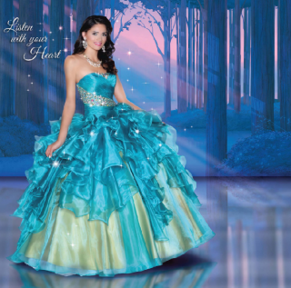 (Fashion) The Disney Forever Enchanted Collection & The Disney Royal Ball Collection 97907547p6