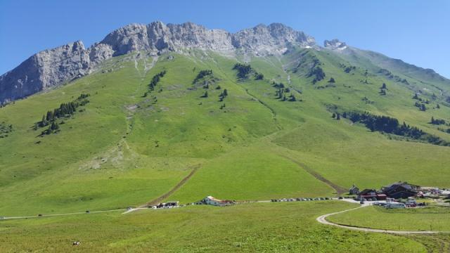 LC8 Rally western Alps - Stella alpina - Alps Tour 2016  99087720160716102459