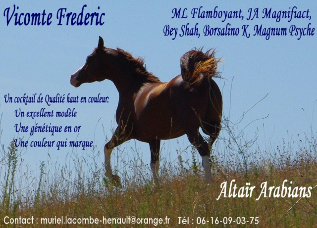 Vicomte Frederic: Alezan sabino, top origines américaines 991321Montage4freddie